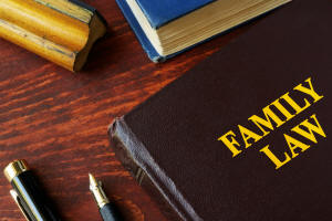 Tampa family law practice areas